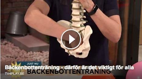 Bäckenbottenmuskler i TV4